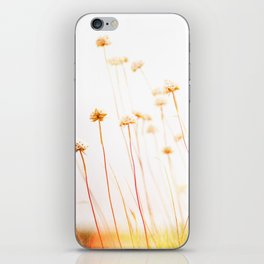 Beach Flora iPhone Skin