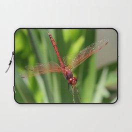 Red Skimmer or Firecracker Dragonfly Closeup Laptop Sleeve