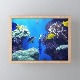 Underwater World Framed Mini Art Print