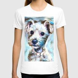 Schnoodle 3 T-shirt