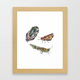 summer bugs Framed Art Print