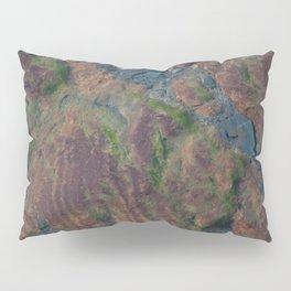 Mossy Water Pillow Sham
