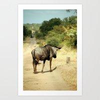 Wildebeest Crossing Art Print