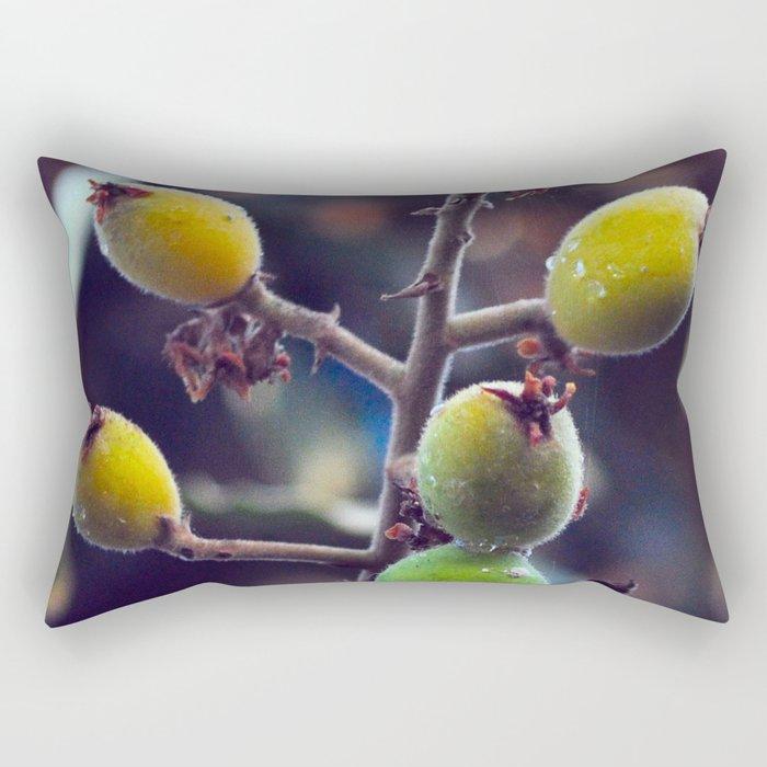 Exotic Fruits - Botanical Garden Rectangular Pillow