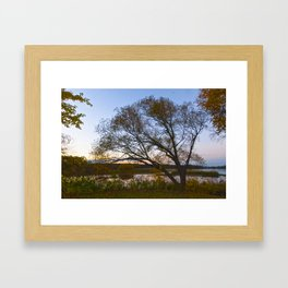 Fall Sunset Framed Art Print