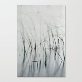 Harmonia ii - Soft Grasses and Calm Water Canvas Print