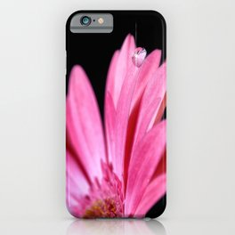Water drop in pink gerber daisy iPhone Case