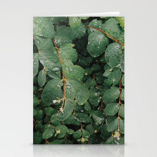 Spring Dew Drops Stationery Cards
