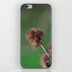 The Burr iPhone Skin