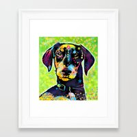 dachshund Framed Art Prints featuring Dachshund by Gary Grayson