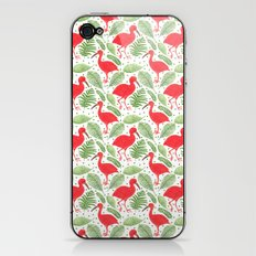 The Beautiful Scarlet Ibis iPhone & iPod Skin