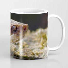 Watercolor Snake, Water Moccasin 13, Merchants Millpond, North Carolina Coffee Mug