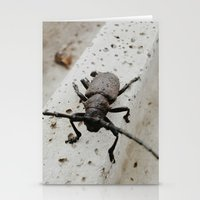 beetle Stationery Cards featuring Beetle by Bor Cvetko