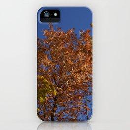 Les arbres dans le ciel iPhone Case