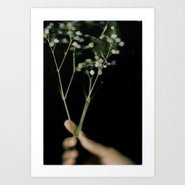i got a flower for you Art Print