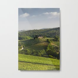 Tuscan Vineyards Metal Print