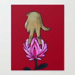 pussy flower Canvas Print