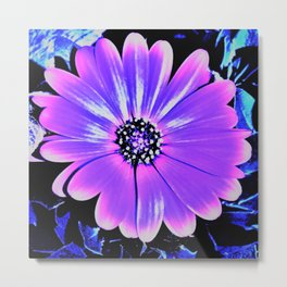 Night Daisy Metal Print