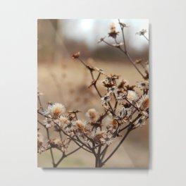 Burnt Flowers Metal Print