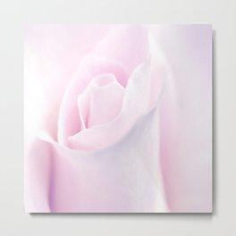Delicate Pink Rose Bud Metal Print