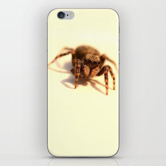 Incy Wincy iPhone & iPod Skin