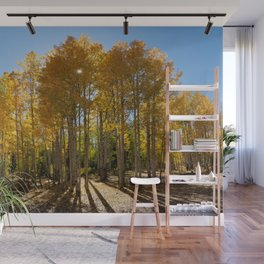 Autumn Blaze outside of Crested Butte, Colorado for #Society6 Wall Mural