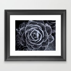 Something Out There Framed Art Print