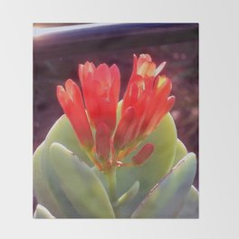 Agave Blooming Throw Blanket
