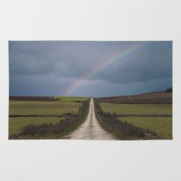 Path under the rainbow Rug