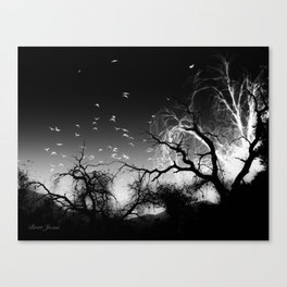 INTO LIGHT Canvas Print