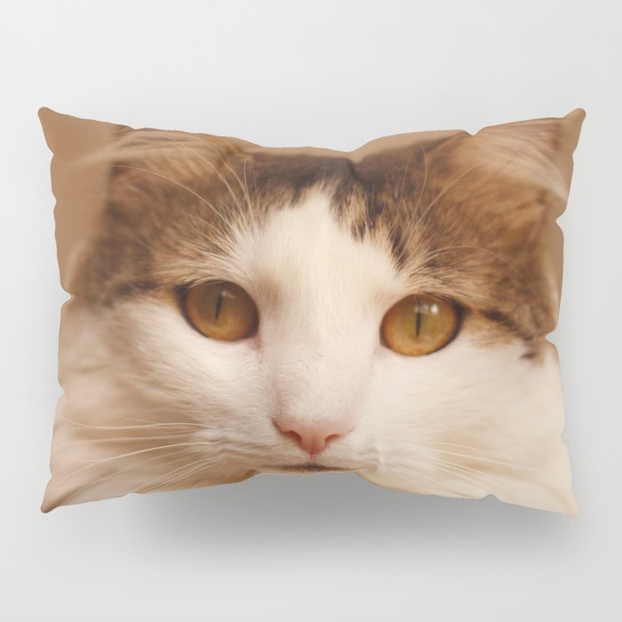 Ragamuffin Cat Portrait Pillow Sham