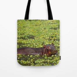 Little Hippo, Africa wildlife Tote Bag