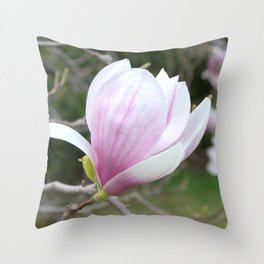 Soft Magnolia Days Throw Pillow