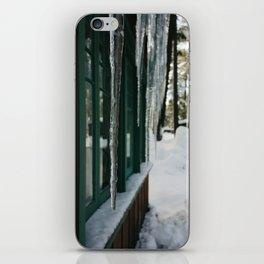 Ice Dream iPhone Skin