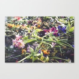 Wilted Stems Canvas Print