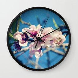 Nectarine Blossoms Wall Clock