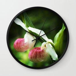 Showy Ladyslipper Flowers, Cypripedium Wall Clock