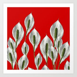 Calla Lilies on Red Art Print
