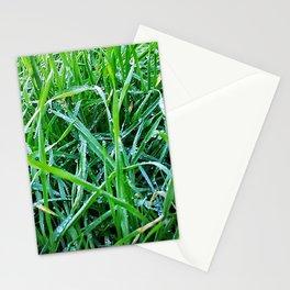 Dewy Grass Stationery Cards