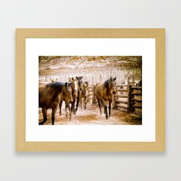 Stampede Framed Art Print