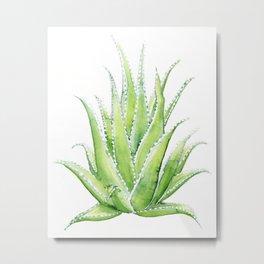 Aloe Vera Watercolor Metal Print