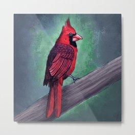 Northern Cardinal Artwork  Metal Print