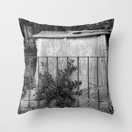 ancient memorial Throw Pillow