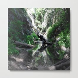 Hush of the forest Metal Print