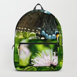 Black Swallowtail Butterfly Backpack
