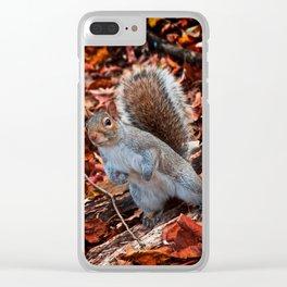 Squirrel Clear iPhone Case