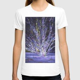 Longwood Gardens Christmas Series 39 T-shirt