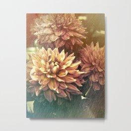 Chrysanthemum Simplicity Metal Print