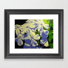 Bursting Bloom Framed Art Print