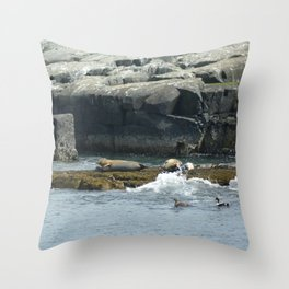 Seals relaxing on Coast of Maine Throw Pillow